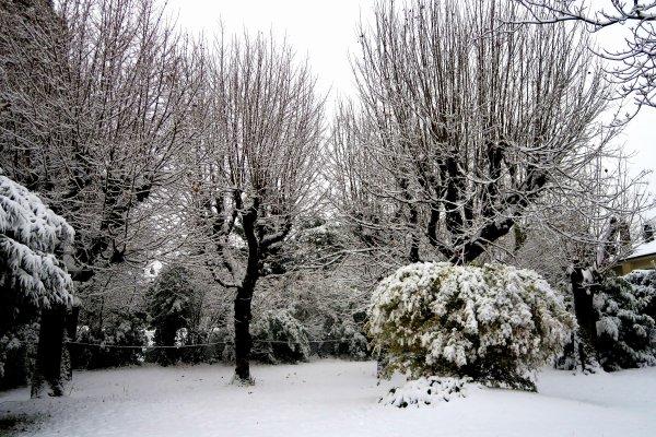 A2085 : Neige au Mont d'Or !