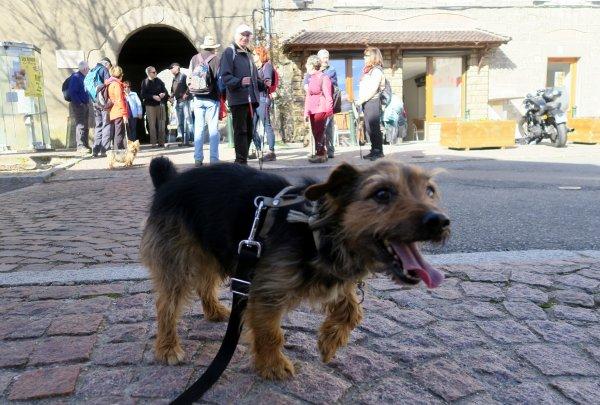 A2098 : Une belle randonnée à Thurins (Rhône)