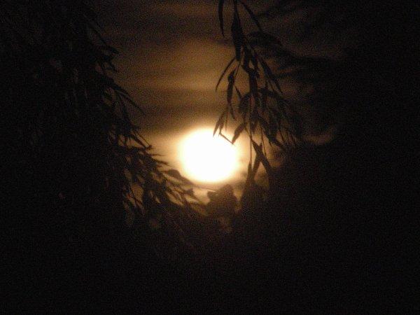 A2118 : Eclipse lunaire le soir du 27 juillet !