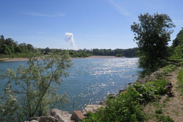 A2214 : A la confluence de l'Ain dans le Rhône