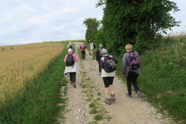 A2216 : Peu de monde en randonnée pour clore le semestre...