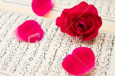 Blog de muslima-yasmine