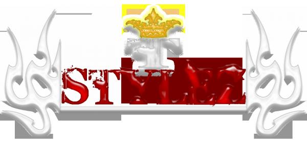 }--)»T-Stylez«(--{
