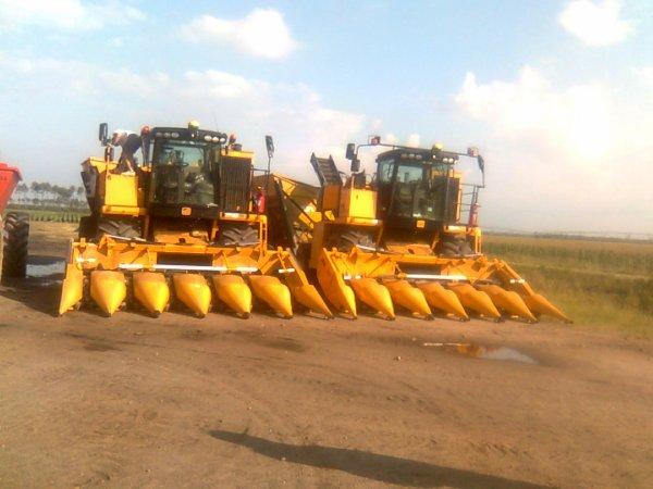 Les 2 bateuses a maïs doux équipé du GPS auto trac au bord du champs