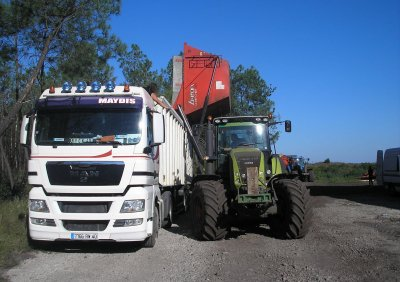 Maïs doux JD6630 , claas 810 axion , NH t7050