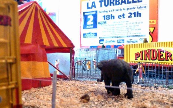 Éléphant cirque Pinder