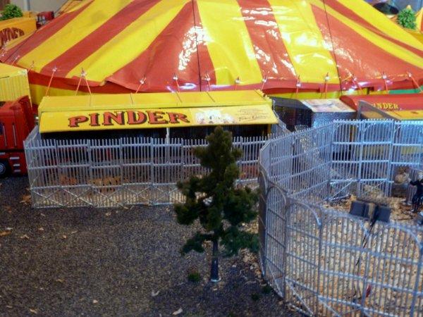 Nouvelle cage extérieure cirque pinder