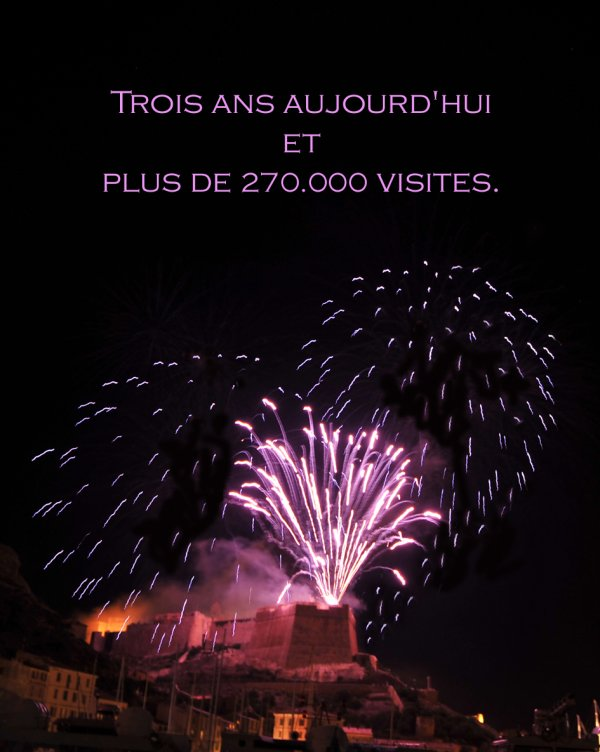 VOTRE BLOG A TROIS ANS ET PLUS DE 273 000 VISITES !