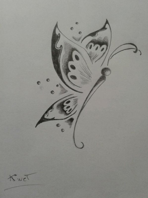 Dessin Papillon Tribal Blog De Art N B Line Salon Tatouage Et
