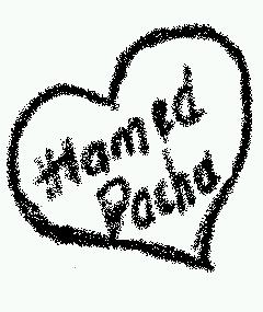 Blog de hamedpacha