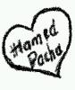 hamedpacha