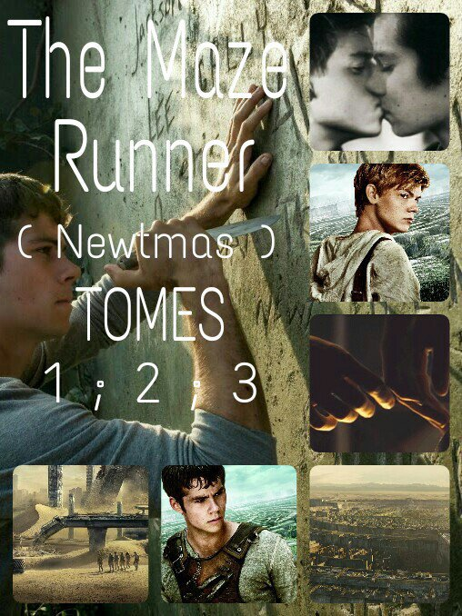 ✿ The Maze Runner ✿