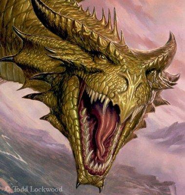 Les dragons de cuivre.
