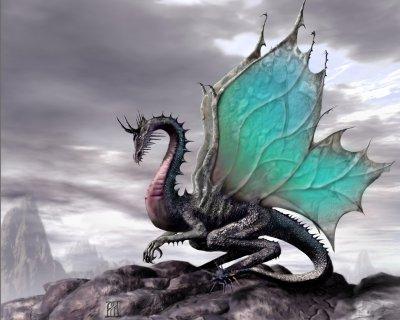 Les dragons-fées.