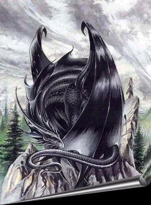 Description du dragon.