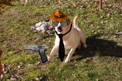 L'agent Mik