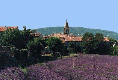 Saint Etienne les Orgues