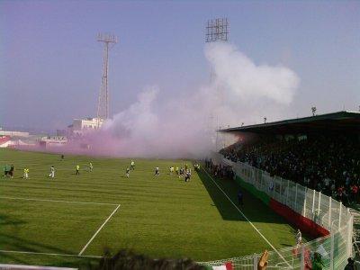 Ultras Verde Leone