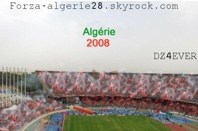 Admirez-moi ce chef d'oeuvre 100 % Algérien