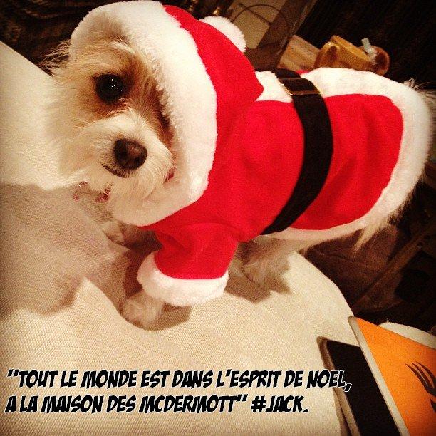 Jack a posté trois photos récemment sur Instagram, une de lui & Hattie ! Il adore sa soeur !!! Elle est trop mimi ! Et une de Minnie, le chien de Tori. Ainsi qu'une de lui & Liam au cinéma !