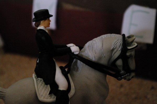 Bienvenue au Domaine Horse Racing !