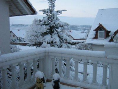 Aww es Schneit!!!