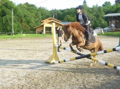 """"""" Lance ton coeur par dessus l'obstacle et ton cheval suivra """""""