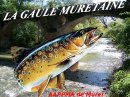 Photo de Gaule-Muretaine-31
