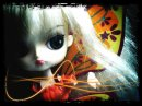 Photo de Orange-Pullip