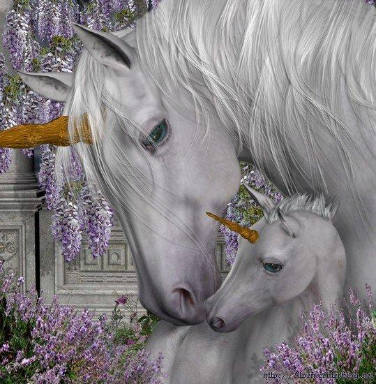 (l) trés belle licornes (l)