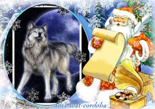(l) cadeau pour mon amie les-ptits-loups-1000 (l)