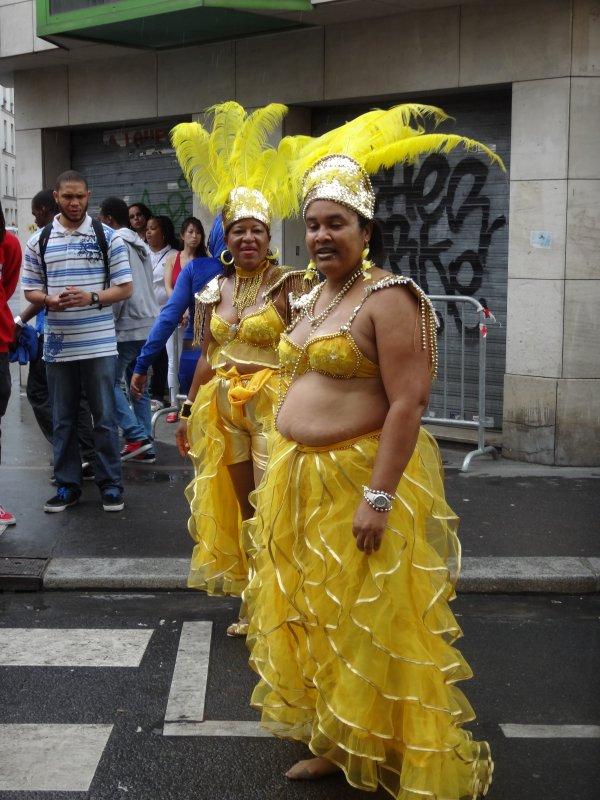 VAN LEVE AU CARNAVAL tropical DE paris LE 07 JUILLET 2012