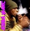fume bien cool  ateba le rasta  boys