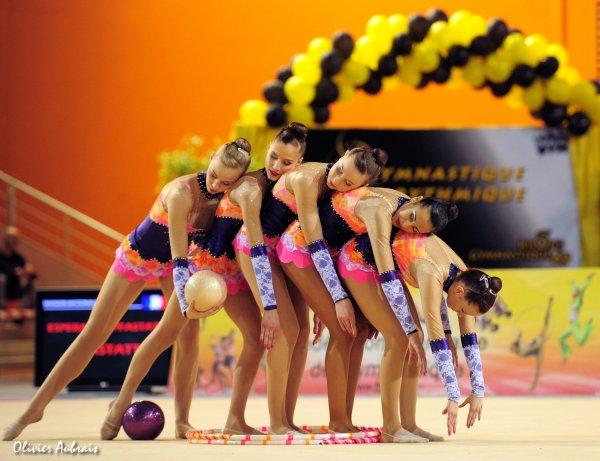 6180. Championnat de France DN : Pfastatt (DN1), 6ème : 81,750 pts