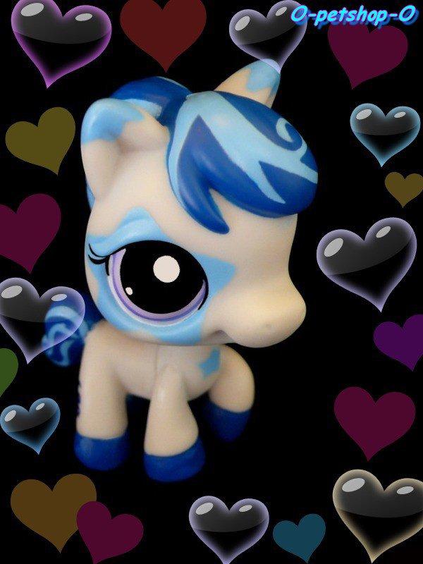 Cheval bleu o petshop o - Cheval petshop ...