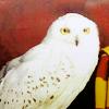 Hedwige Theme