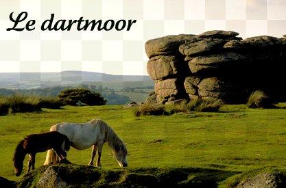 Le dartmoor