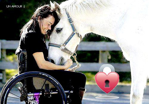 les chevaux est les handicapés