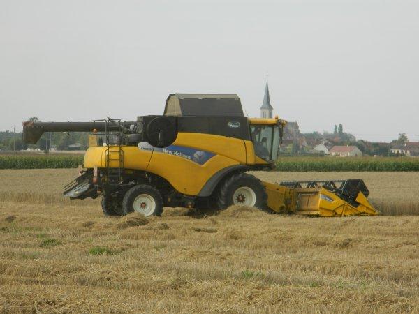moisson 2011 (blé)