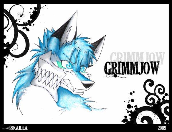 Grimmjow, my wolf...!
