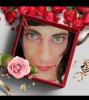 Blog deTRANS lady-boy-poete-banlieu25