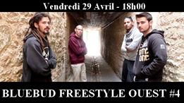 Bluebud Freestyle Ouest #4  Fontenay Le Comte