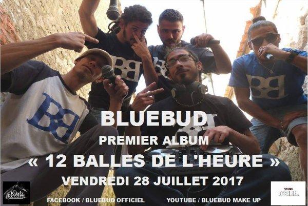 BlueBud Premier album ! Partagez autours de vous !
