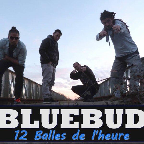 L'album BlueBud enfin dispo sur BandCamp pour 1¤ symbolique
