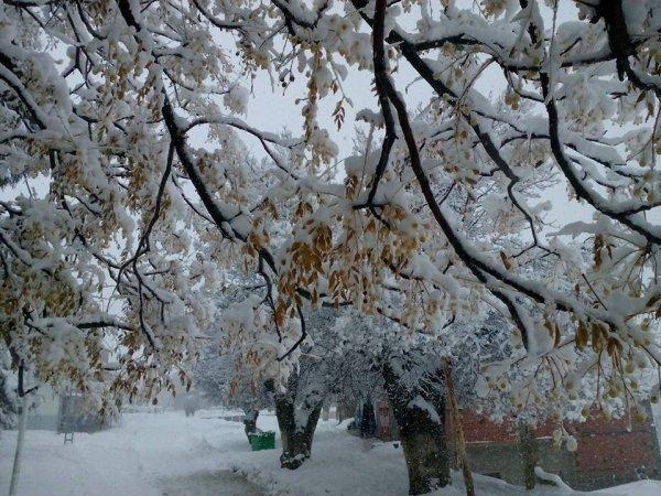 snow snow snow yeah ^^