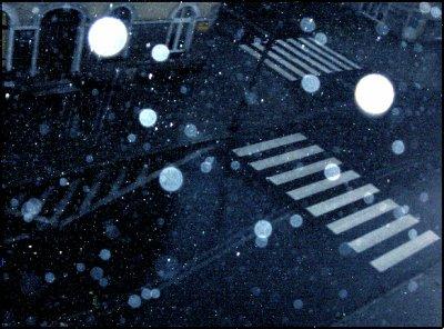 ~ Rain ~