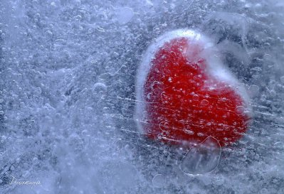 ~ Frozen Heart ~