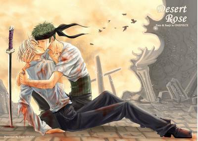 * Sanji et Zoro *