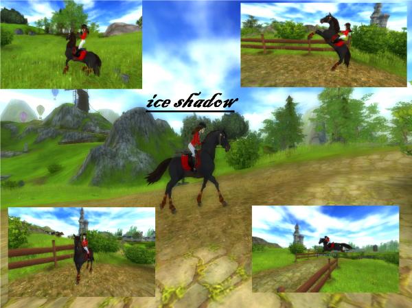 Mon 1er cheval sur SSO (star stable)