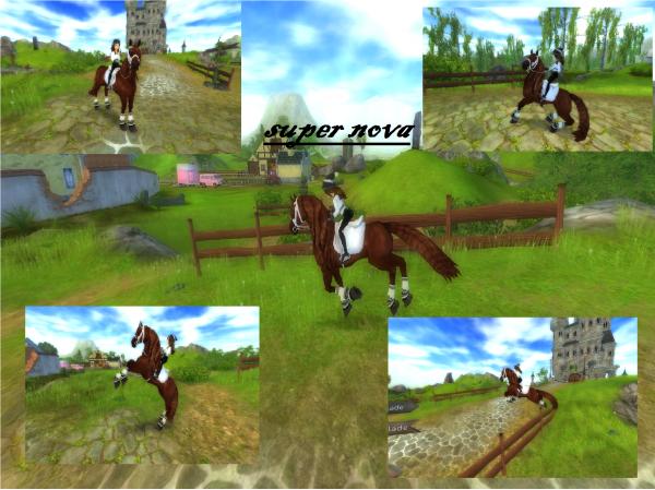 Mon 3ème cheval SSO